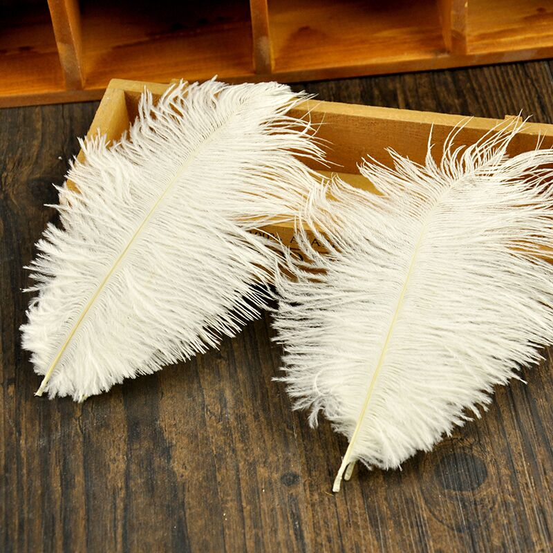 High Quality Natural Ostrich Feathers For Photography Props White Pink Gray Feather DIY Photos Background Decorations
