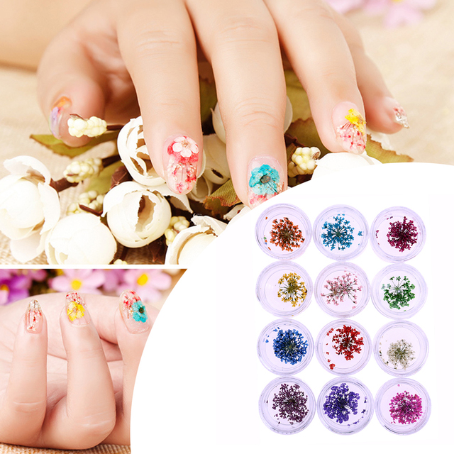 24pcs 3D Dried Flower for Nail Art Decorations Natural Nail Dry ...