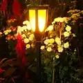 Solar powered LED Flame Lamp Waterproof Lawn Flame Flickering Torch Light Outdoor Solar Garden lantern decoration Flower Light