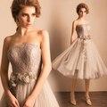 Vestidos de fiesta cortos Paris Diosa encaje hermoso gris elegante estilo clásico Tubo Top sexy vestidos de fiesta cortos princesa
