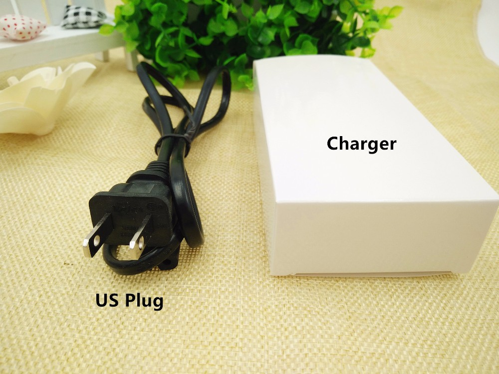 12V 3A Battery Charger (4)