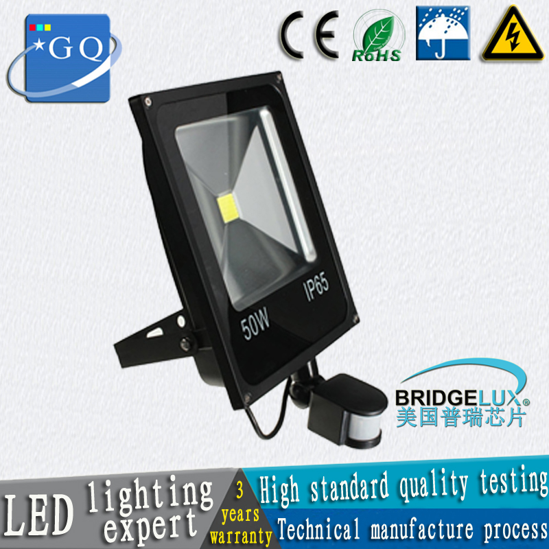 Induction LED flood light led floodlights led search light ourdoor lamp door lamp AC220V  DC12V
