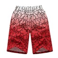 Casual Print Bermudas Beach Plus Size Quick Dry 4XL Mens Swimwear