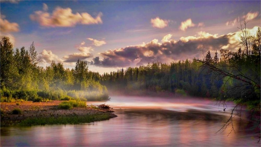 Beautiful Great Peaceful Nature Landscape River Mist