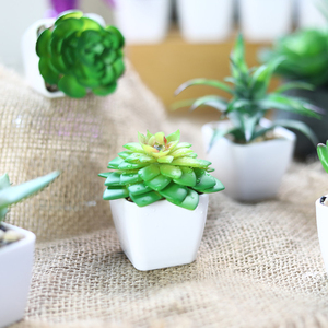 Image 3 - Erxiaobao 12 Pieces/Set Simulation Succulents Mini Bonsai Potted Green Artificial Plants in Pot Placed Home Table Decoration