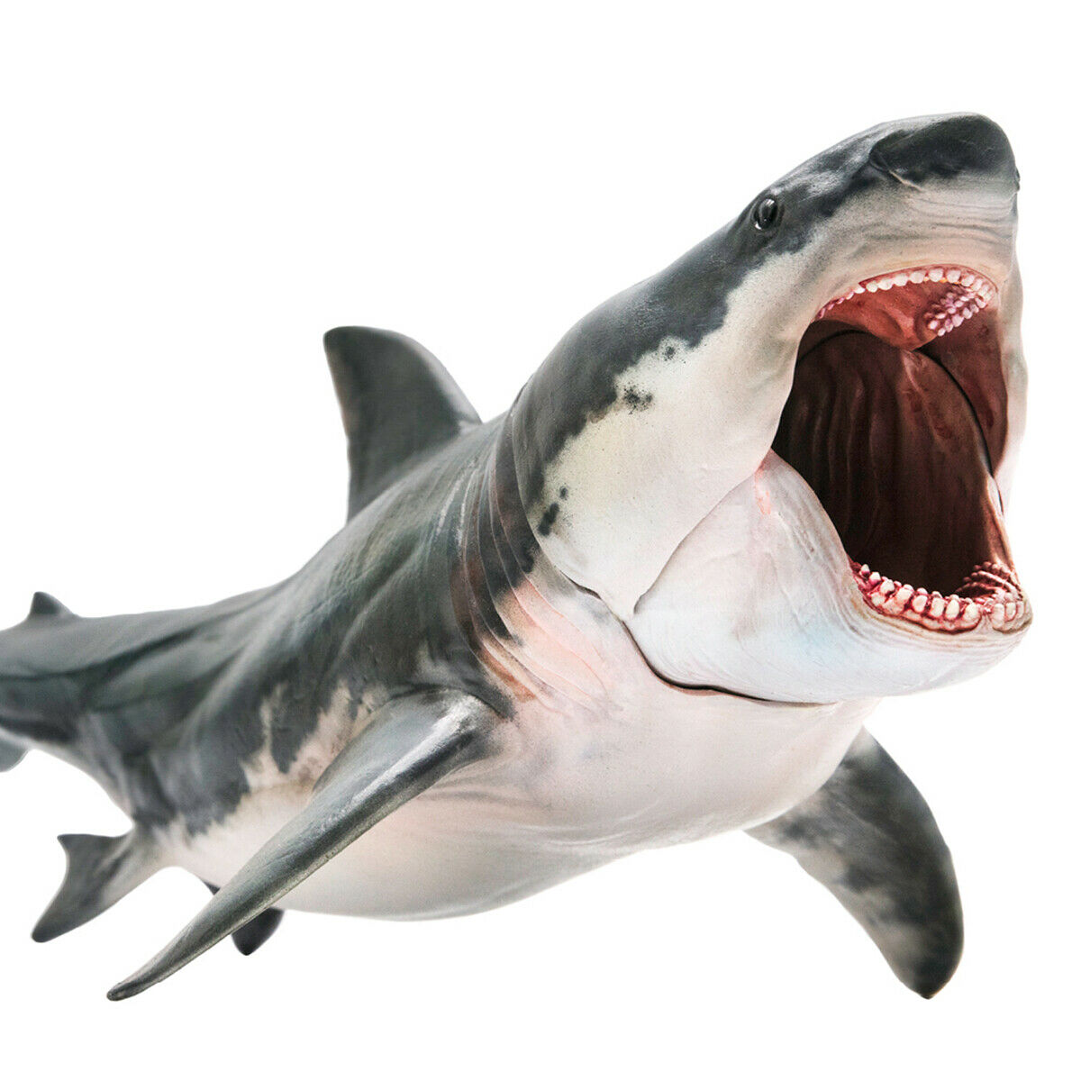 PNSO Megalodon Model Figure Action Shark Prehistoric Ocean Animal Adult Kids Collection Science Education Toys Gift Home Decor