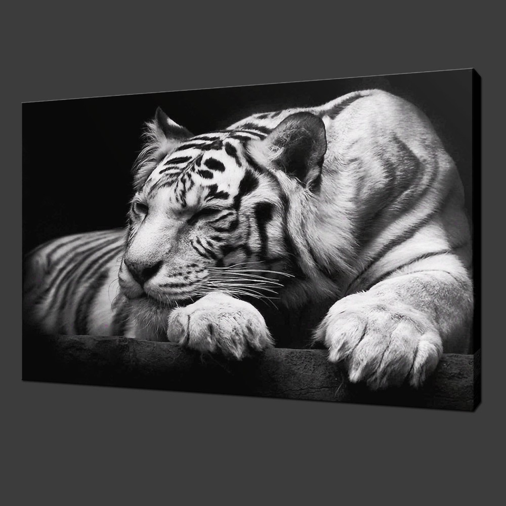 Unframed White Tiger Paint On Canvas Paintings Home Decor for Living Room Decoration Modern Art Animal Picture Wall Art