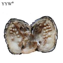 Freshwater Cultured Love Wish Pearl Oyster 5-7mm Sold By PC one pearl oyster with about 25 pearls
