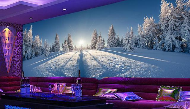 Hd Schalldichte Tapete Kundenspezifisches Foto Wandmalereien Winter