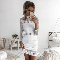 Sibybo Sexy Club Dress 2017 White Embroidery Floral Celebrity Zippers Dress Long Sleeve Slim Hollow Lace