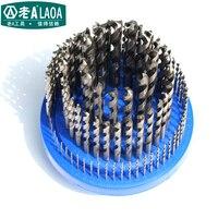 LAOA 100pcs High Speed Steel Drill Size 1MM 13MM Twist Drill Sets Metal Bit