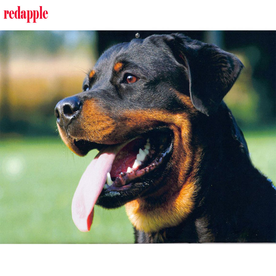 Detail Feedback Questions About 5d Diamond Embroidery Rottweiler 3d