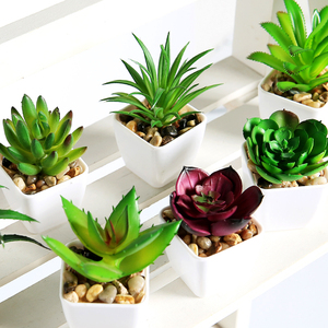 Image 5 - Erxiaobao 12 Pieces/Set Simulation Succulents Mini Bonsai Potted Green Artificial Plants in Pot Placed Home Table Decoration