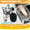 O Envio gratuito de Estilo de SOM SURPREENDENTE Para Neumann Condensador Profissional de Gravação de Microfone Estúdio Broadcasting Choque Monte Stand