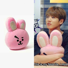 BT21 Plushie Pillow