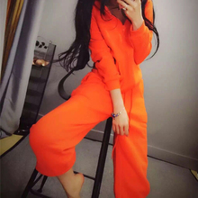 Womens suit female  spring new style casual hooded European and American solid color street two / piece