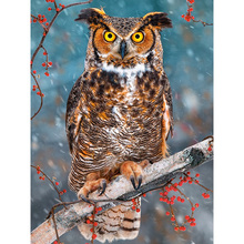 YIKEE diamond mosaic full package owl 5d Full Square/Round Drill Picture Of Rhinestones Beadwork   h1204 yikee diamond painting full square dogs 5d full square round drill picture of rhinestones beadwork h1468