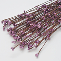 Pip Berry Garland Vine Stem Violet gradient for Floral Head Ring Crafts Wedding Garland Decoration