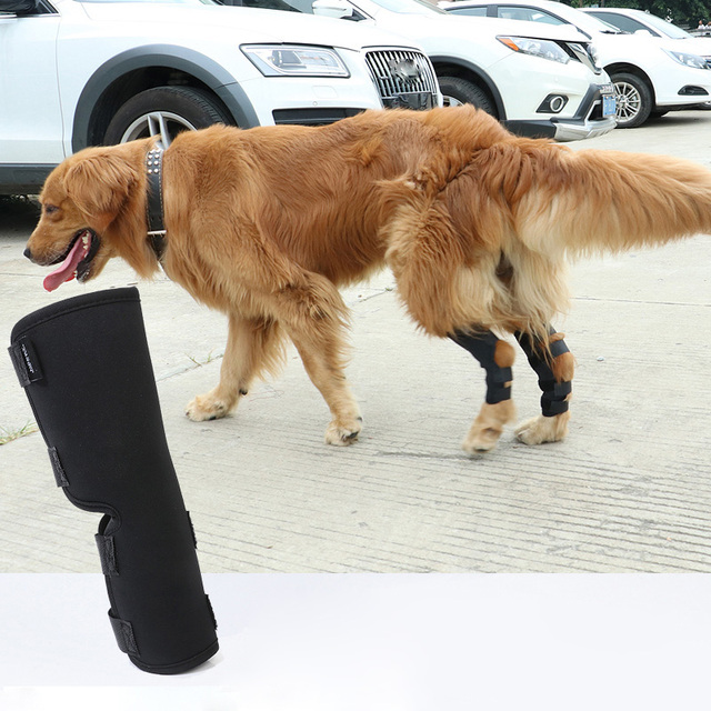 2PCS/pair Dog Kneelet Pet Leg Knee Hock Brace Straps Protection Dog Bandages Wrap Medical Supplies Dogs Pad Therapeutic Support