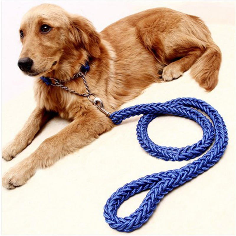 Pet Dog Leash Collars Harnesses Colorful Eight-strand Leads Rope Nylon Braided Leash For Medium Large Dogs Supplies