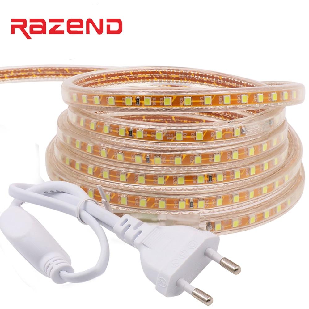 220V Led Strip SMD 2835 120led/M 1m 2m 3m 5m 10m 100m Waterproof Flexible Tape Light EU Power Plug 23key 11key Dimmer Controller