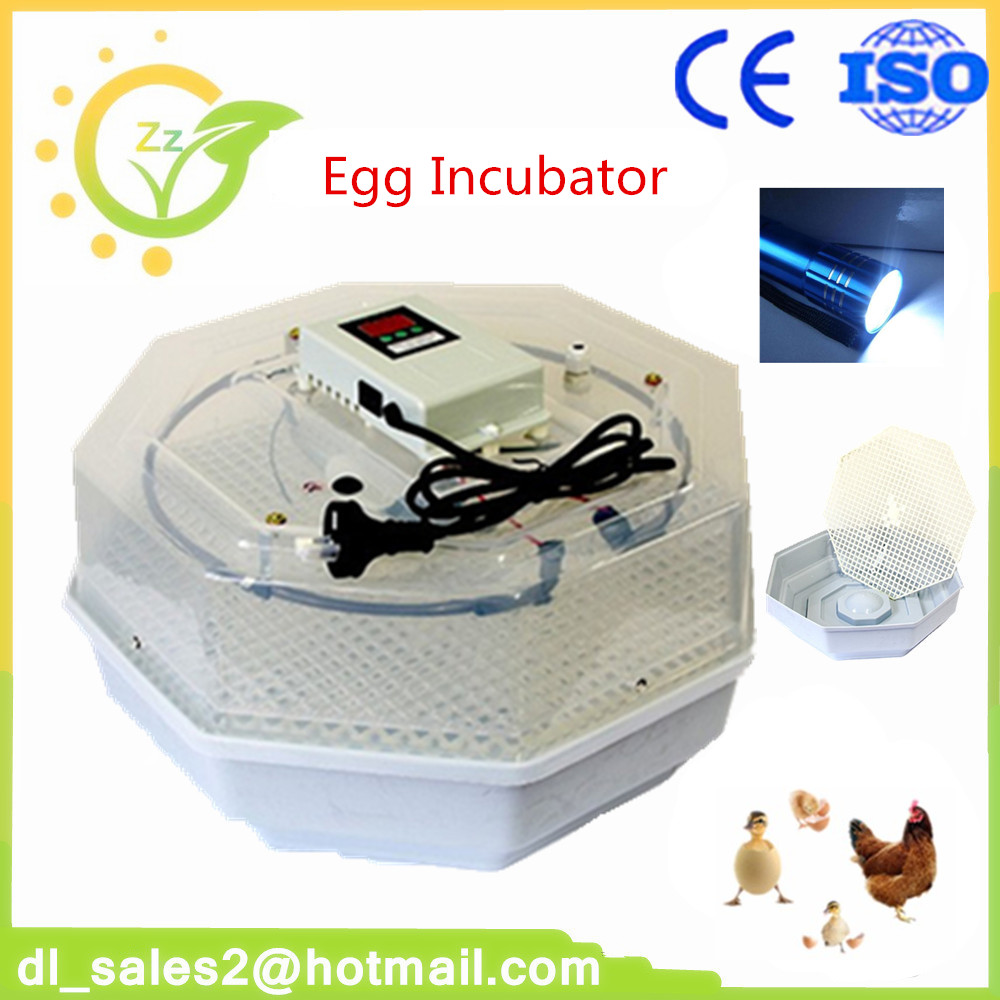 цена New Home Use Poultry Incubator Machine Mini Digital Egg Incubator Chicken Duck Bird Small Incubators
