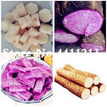"50 Pcs Purple Yam ""Purple ginseng"" Long taro Cylindrical roots for food plants High nutrition organic vegetables Easy to Grow(China)"