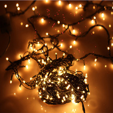 EU Plug LED Light String 4M 100 Leds Christmas Decoration Lights Warm White Rice Bulbs Hotel Holiday Decoration Lights Christmas