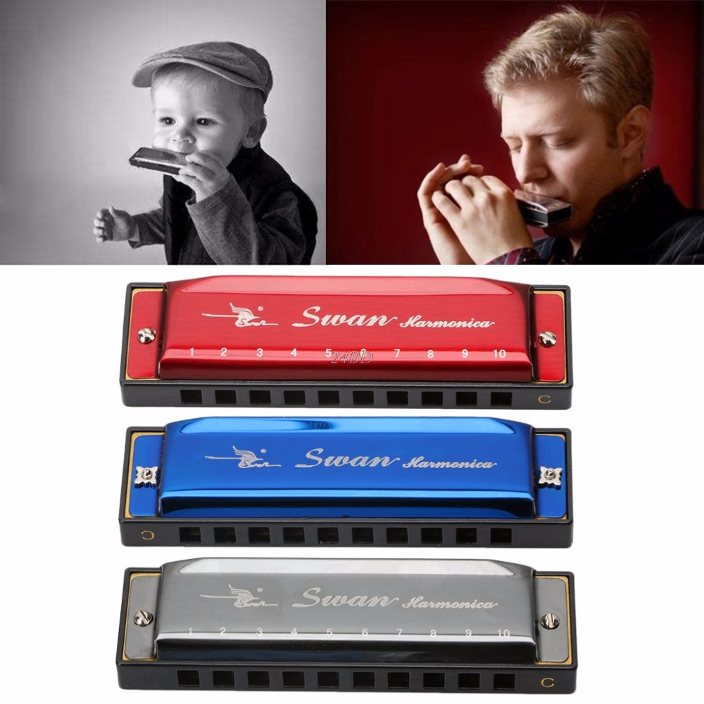Blues Harmonica 10 Holes Key of C Musical Instrument With Box Stainless Steel M08