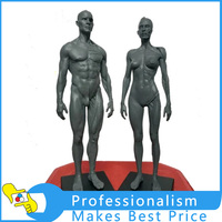 30cm Height Human Anatomical Anatomy Skull Blood Sculpture Head Body Model Muscle Bone Model Male And