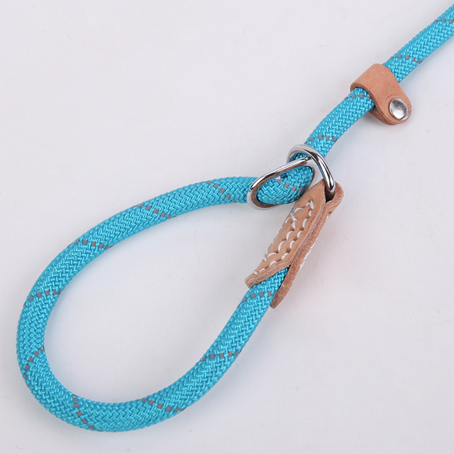 Breakaway Dog Leash 2