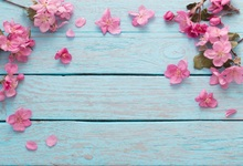 Laeacco Wooden Board Blooming Flowers Petals Baby Doll Photography Background Customized Photographic Backdrop For Photo Studio