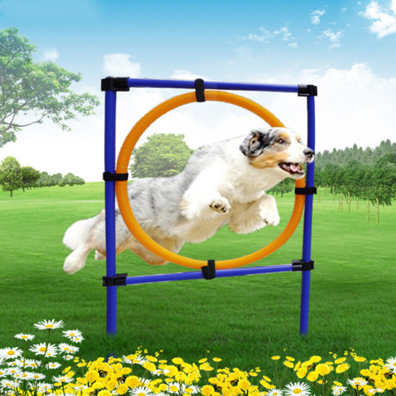 Dog Sports Equipment Training Toys Dogs High Jump Outdoor ...