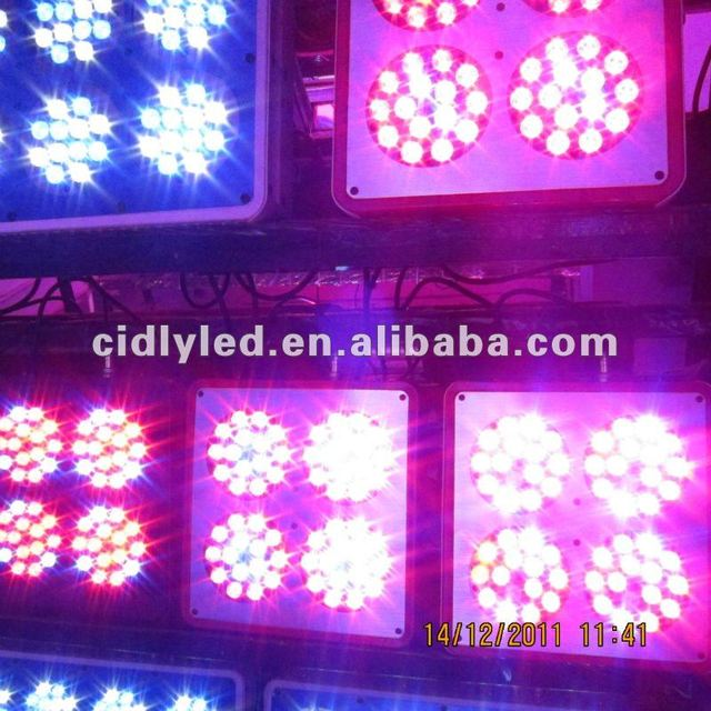 APOLLO 4 grow lights for hydroponics and horticulture