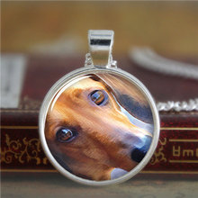 10pcs/lot Daschund necklace,a small dog that has very short legs, a long body, and long ears.necklace print photo necklace(China)