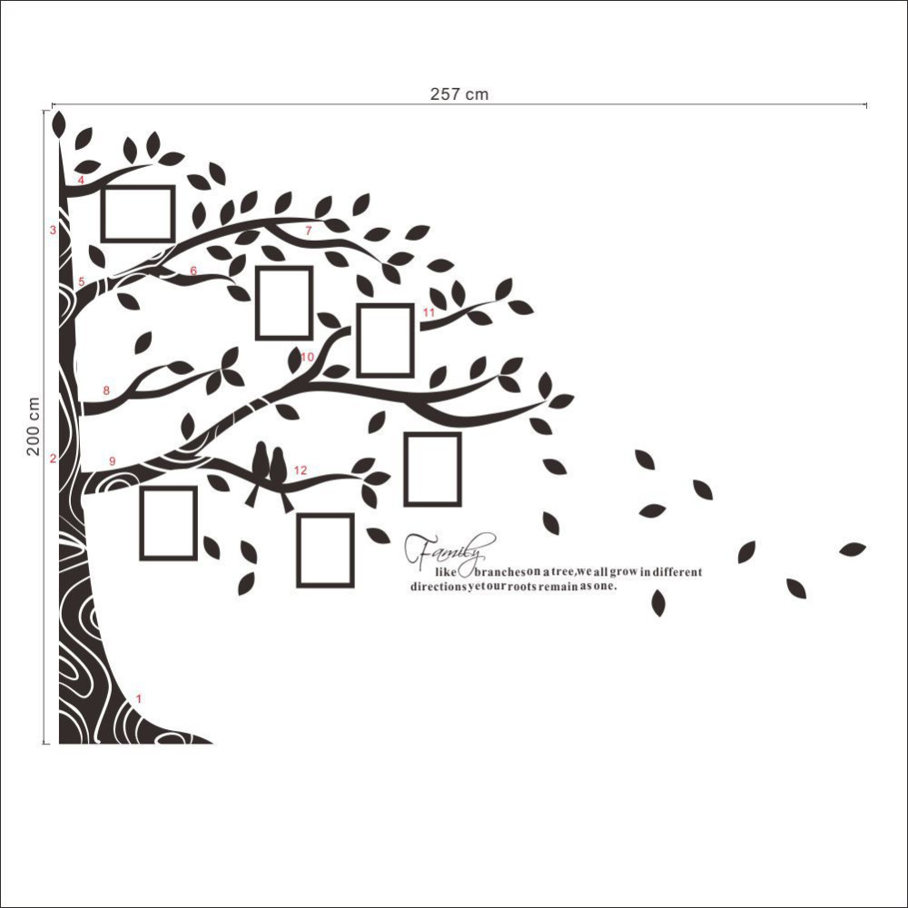 Large Vinyl Family Tree Photo Frames Wall Decal Sticker Vine Branch ...
