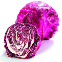 200 nutritious Cabbage Red Acre Great Vegetable Seeds