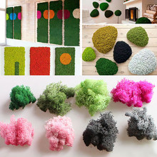 2019NEW Natural Norwegian Reindeer Moss Preserved Dried Craft Flower Stamen Decoration Wedding Ornament Fairy Garden Decor(China)