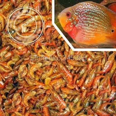 velkoobchod tropický Rajah Cichild rybí krmivo Zmrazené sušené krevety pro velkoobchodní dopravu zdarma 200G