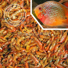 cheapest  tropical Rajah Cichild fish food Freeze dried shrimp for wholesale free shipping 200G