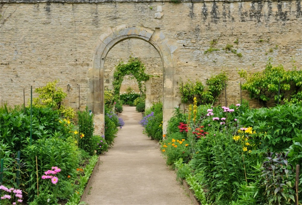 Laeacco Yard Old Wall Arch Door Plants Flowers Scenic Photography Backgrounds Customized Photographic Backdrops For Photo Studio