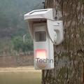 Fornecimento de energia Solar ao ar livre detector PIR sensor de alarme infravermelho uso independente de alta-tensão uso pólo