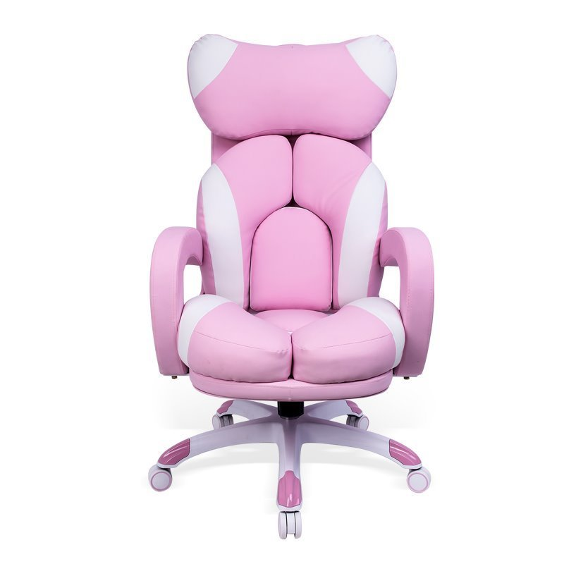 Host Chair Lifted Reclining Hairdressing Stool With Footrest Rotated Office Massage Chair Household Cute Computer Chair