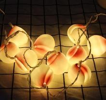 DZ T 2 m 10Led Led friut огни струнный шар батарейный блок декоративная светящаяся гирлянда