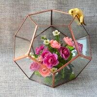 New Glass Geometric Terrarium Box Tabletop Succulent Plant Planter Case Home Decor Gift Wedding Supply Garden
