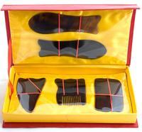 New High Quality Professional Traditional Acupuncture Massage Tool Set Gua Sha Guasha