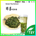 green tea extract/green tea extract tea polyphenols/egcg powder