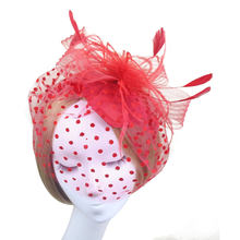 Retro Style Bird Cage Mesh Bridal Face Veil Feather Fascinator Hair Clip (Red)(China)