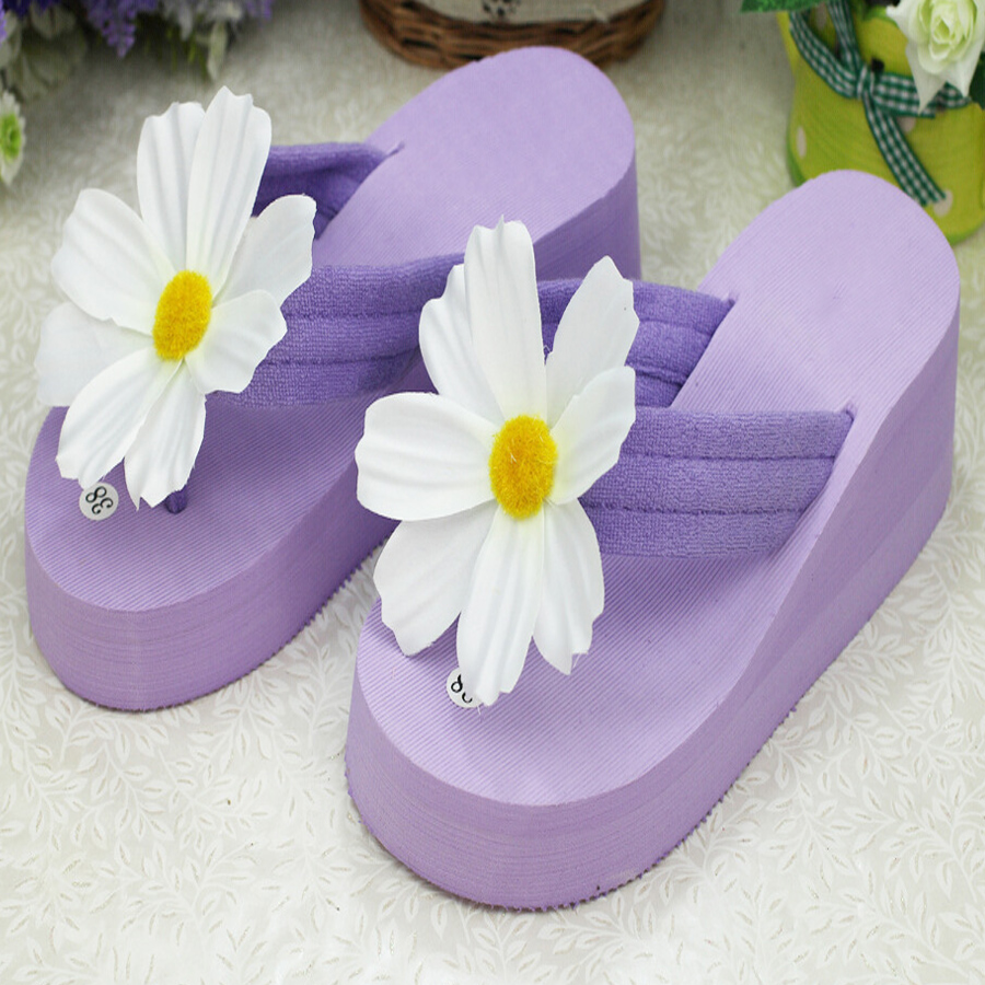 Sale top new summer women  fresh and simple white chrysanthemum  flip flops sandals thick bottom comfortable travel beach shoes mukund shiragur d p kumar and venkat rao chrysanthemum genetic divergence