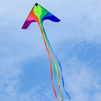 Free Shipping Children Toy Outdoor Phoenix Kite Sports Beach Resin Rods Volant Flying Rainbow Kites Pipas Voadores Sailing Surf
